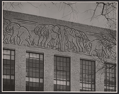 Elephant frieze on the biology lab at Harvard