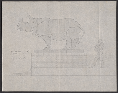 Scale drawing of rhinoceros sculpture