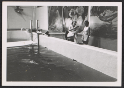 Katharine Lane Weems modeling a dolphin in clay at the Atlantic Aquarium