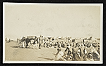 [Combing, drying and transporting wool for American Relief, Baghdad, Persia ]