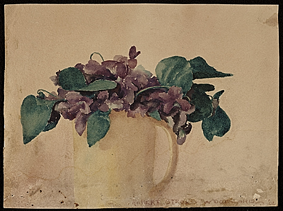 Violets in a yellow mug