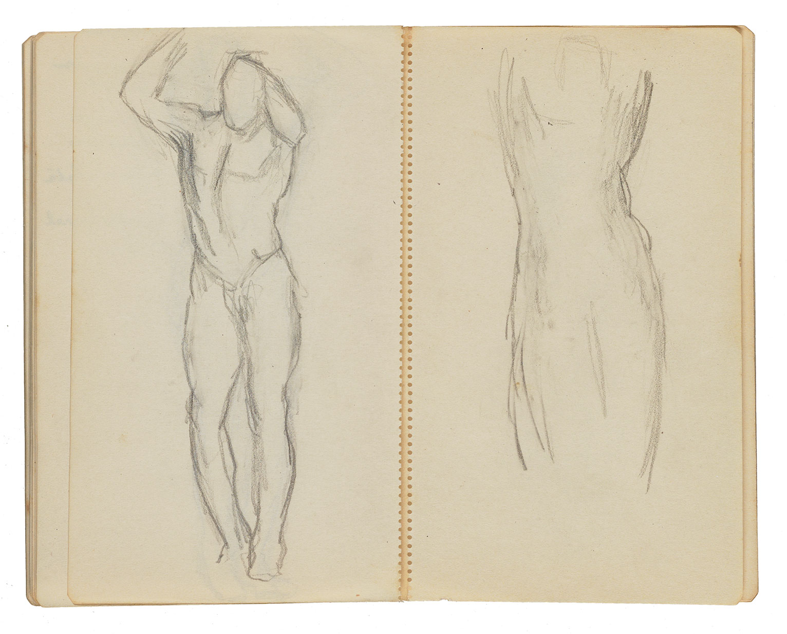 Two pages of anatomical drawings by Gertrude Vanderbilt Whitney