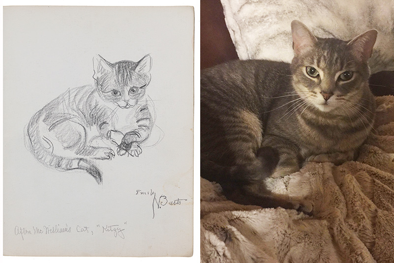 Sketch of a cat by Emily Barto next to a photograph of an AAA staff member's cat